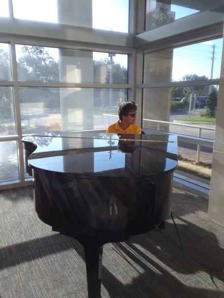 piano play-valet